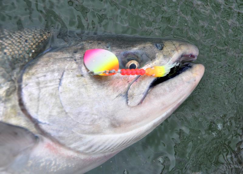 Washington fly fishing autos weblog for Wa fly fishing forum