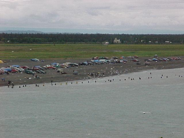 A uniquely Alaskan activity: local residents dipnetting sockeye at he mouth of the Kenai River.