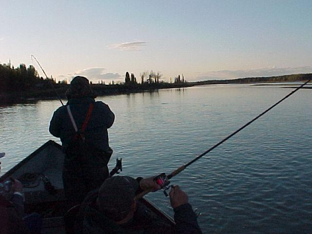 A late evening fish in early June provides us with a completely empty river, except for lots of kings on late high tide ... as t