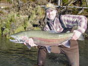 This is what OP steelhead dreams are made of!