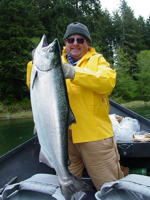 Early May Spring Chinook From The Sol Duc River