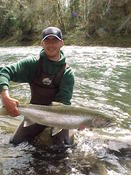 Calawah River steelhead in mid-April.