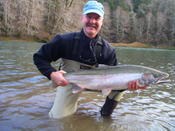 Bogachiel River wild steelhead caught by Michael N.