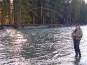 Winter steelhead on the fly is one of the angling world's most rewarding experiences.