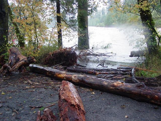 Record high flows, water & debris in the Leyendecker lauch site.