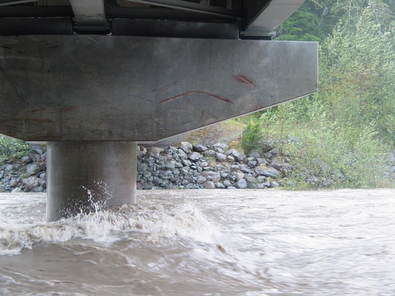 Extreme high water ... notice tree scars on bridge girders.