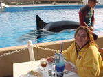 Corey has lunch with Shamu!