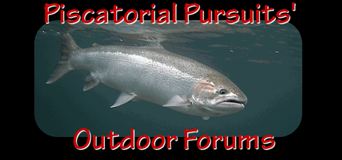 THE PP OUTDOOR FORUMS