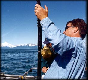 Ninilchik, Alaska Halibut Fishing Trips with Piscatorial ...
