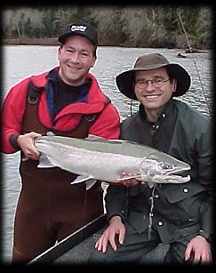 Hoh River native steelhead ... Washington steelhead fishing guides