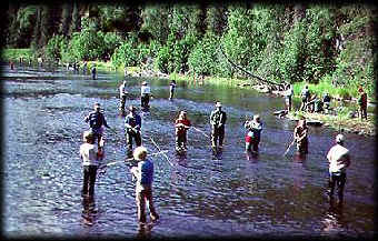 Russian river alaska sockeye red salmon fishing an for Russian river fishing